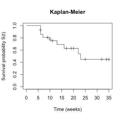 曲線 カプラン マイヤー Excelでカプランマイヤー生存プロットを作成する方法